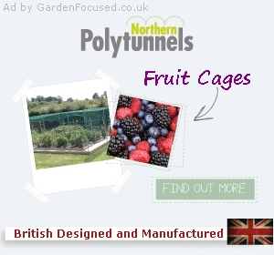 Ad for Northern Polytunnels