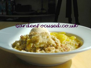 Plum crumble served in a dish