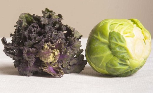 Kalette and Brussels Sprout