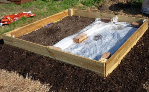 raised bed with bark chip path round it