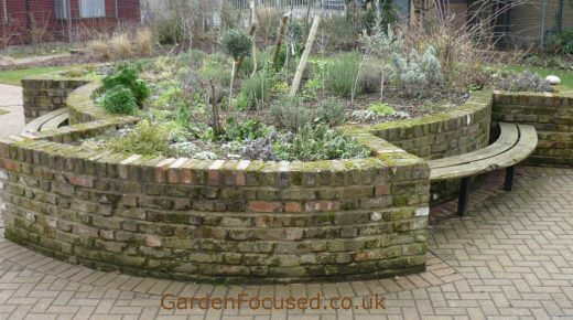 Brick edged raised bed